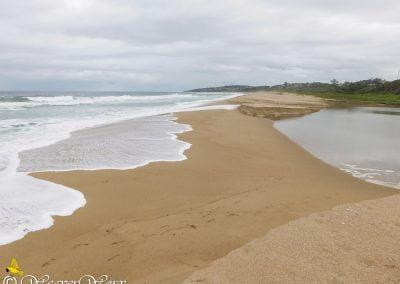 Elysium Beach 10