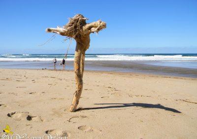Elysium Beach 8