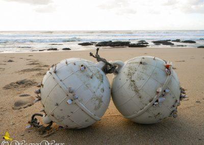 Mtwalume Beach 14
