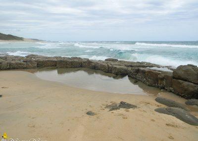 Mtwalume Flat Rocks-5