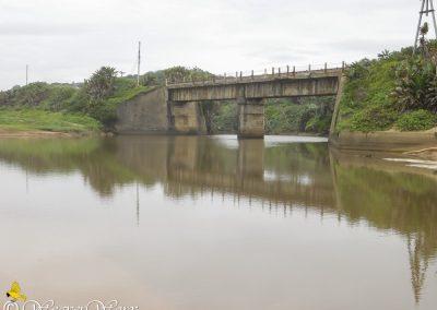 Mvuzi River 2