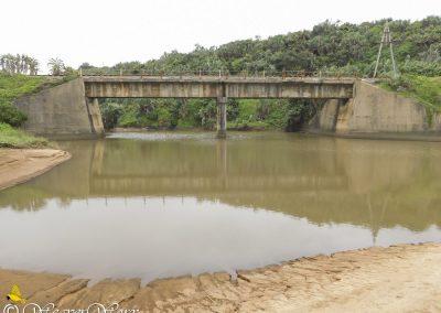 Mvuzi River 5