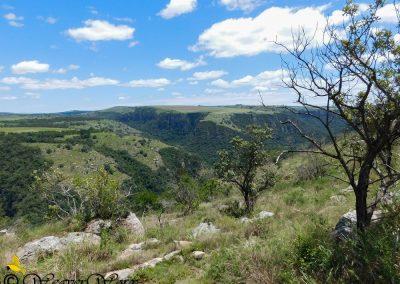 Oribi Gorge 3