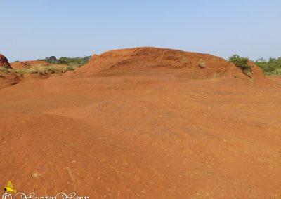 Red Desert 2