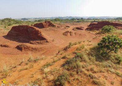 Red Desert 3